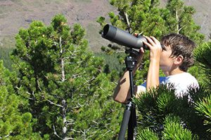 Spotting for mountain goats in Glacier National Park
